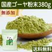 送料無料 国産ゴーヤ粉末 380g 沖縄産 青汁 サプリメント 無添加 まるごと 丸ごと 100% ゴーヤー パウダー 苦瓜 にがうり ジュースに