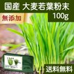 送料無料 国産・大麦若葉粉末100g 無添加 100% 青汁スムージーに 野菜不足の方に 無農薬