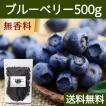 ブルーベリー500g ドライフルーツ チャック付き袋 送料無料