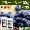 ブルーベリー100g×2個 ドライフルーツ 送料無料