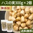 ハスの実300g×2個 蓮の実 はすの実 蓮肉 ハス肉 アルカロイド 薬膳茶の材料にも 送料無料