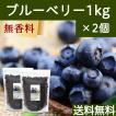 ブルーベリー1kg×2個 ドライフルーツ チャック付き袋 送料無料