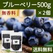 ブルーベリー500g×2個 ドライフルーツ チャック付き袋 送料無料