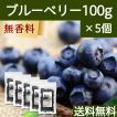 ブルーベリー100g×5個 ドライフルーツ 送料無料