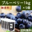 ブルーベリー1kg×5個 ドライフルーツ チャック付き袋 送料無料
