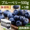 ブルーベリー500g×5個 ドライフルーツ チャック付き袋 送料無料