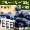 ブルーベリー100g×3個 ドライフルーツ 送料無料