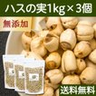 ハスの実1kg×3個 蓮の実 はすの実 アルカロイド 薬膳茶の材料にも 業務用 蓮肉 ハス肉 送料無料