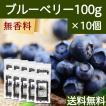 ブルーベリー100g×10個 ドライフルーツ 送料無料