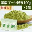 国産ゴーヤ粉末100g×3個 沖縄産 青汁 サプリメント 無添加 まるごと 丸ごと 100% ゴーヤー パウダー 苦瓜 にがうり ジュースに