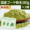 国産ゴーヤ粉末 380g×3個 沖縄産 青汁 サプリメント 無添加 まるごと 丸ごと 100% ゴーヤー パウダー 苦瓜 にがうり ジュースに