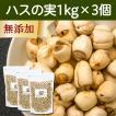 ハスの実1kg×3個 蓮の実 はすの実 アルカロイド 薬膳茶の材料にも 業務用 蓮肉 ハス肉