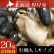 カキ ギフト 海鮮 北海道産 厚岸産 牡蠣丸(カキマル) Lサイズ 20枚 生食用 殻付き (軍手、牡蠣ナイフ、剥き方説明書付き)