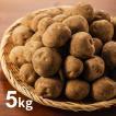 北海道芽室町尾藤農産 尾藤さんちのじゃがいも 北あかり5kg MLサイズ 1個約50g〜250g 同梱不可 ギフト対応不可 産地直送 送料無料