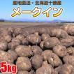 北海道芽室町尾藤農産 尾藤さんちのじゃがいも メークイン5kg MLサイズ 1個約50g〜250g 同梱不可 ギフト対応不可 産地直送 送料無料