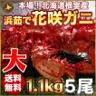 敬老の日 ギフト 2017 花咲蟹 1.1kg × 5尾 希少な 花咲蟹 北海道産 蟹