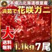 敬老の日 ギフト 2017 花咲蟹 1.1kg × 7尾 希少な 花咲蟹 北海道産 蟹