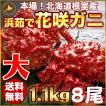 敬老の日 ギフト 2017 花咲蟹 1.1kg × 8尾 希少な 花咲蟹 北海道産 蟹