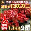 敬老の日 ギフト 2017 花咲蟹 1.1kg × 9尾 希少な 花咲蟹 北海道産 蟹