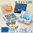 白い恋人 12枚入 石屋製菓/ISHIYA (北海道お土産人気商品)