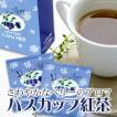 ハロウィン ポイント消化 ハスカップ紅茶 北海道 お土産