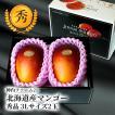 ハロウィン 北海道産 神内マンゴー 3Lサイズ 秀品 2玉 アップルマンゴー アーウィン種 送料無料 お中元ギフト 着日指定可 のし対応 お取り寄せ