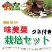 藤田智先生監修 種から栽培セット 味美菜のタネつき