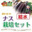藤田智先生監修 ナス用 給水プランター栽培セット 苗はついておりません