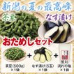 送料無料 新潟県黒埼地方産の枝豆 限定500食 おためしセット (茶豆500g ナス漬け5玉)