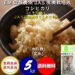 平成30年産 新米 無農薬 有機米 自然農法 JAS認定 コシヒカリ 「水の精」 食用玄米 5kg
