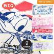 再入荷 ディズニー キャラクター BIG バスタオル 75×150cm 大判 タオル タオルケット キッズ 子供 男の子 女の子 プール