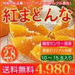 送料無料 愛媛産みかん 紅まどんな 2.8kg 10〜15玉 柑橘 の 新品種 ゼリー のようなプルプル果肉 贈答 お歳暮 に最適