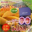 父の日 ギフト 送料無料 あまーい果汁ととろける果肉!宮崎産 完熟 マンゴー 2玉 マンゴ専用化粧箱入り