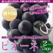 お中元 ギフト 送料無料 香川県産 ぶどう ピオーネ 2房 総重量 約800グラム化粧箱入り 果物ギフト フルーツギフト