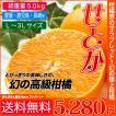 【送料無料】こんな柑橘あったの? 幻の高級柑橘「せとか」 (総重量 約5kg)