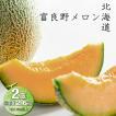 メロン 北海道 富良野 赤肉メロン 2玉 送料無料 お中元 フルーツ ギフト