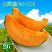 お中元果物ギフト メロン 送料無料 北海道産 赤肉メロン 2玉 フルーツ ギフト 御中元