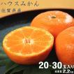 お中元 ギフト 送料無料  佐賀県産 ハウスみかん 2.4kg お中元ギフトやお盆のお供えにも! 果物ギフト フルーツギフト