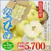 なつひめ 5kg 送料無料 鳥取県 新品種 青梨でありながら豊かな甘み