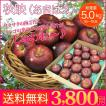 送料無料 秋映 あきばえ 5kg 16〜18玉 甘みと酸味のバランスが逸品!りんご