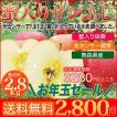 送料無料 青森県産 蜜入り サンふじ 2.8kg 10〜11玉 全ての りんご に蜜が入っている 光センサー撰果 蜜入り保障 リンゴ 贈答 お歳暮 に最適