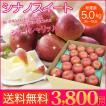 送料無料  長野県産 シナノスイート 約5kg 16〜18玉 りんご 三兄弟 の1つ