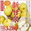 新甘泉 しんかんせん 2kg 梨の新品種 二十世紀梨で知られる鳥取の 新しい 和梨 送料無料