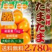 送料無料 宮崎県産 完熟 金柑 たまたま 1kg 糖度センサー撰果 きんかん キンカン