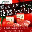 乳酸菌de発酵トマトソース 12g×11包 2個セット
