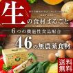 生食ドリーム46|還元発酵酵素|腸活|ダイエット|ファスティング