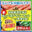【送料込み】九州野菜8品と長崎県産の牛・豚・鶏の精肉約1kgほっぺる新デーリィセット!【放射能不検出】
