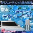 俺のコーティング 撥水トップコート ボディ用 ガラスコーティング用 車 全色対応 白・淡色系にオススメ 送料無料