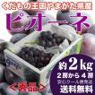 ぶどう 葡萄 ピオーネ 約2キロ 2房から4房 秀品 山形県産 種なし 葡萄 ブドウ