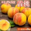 黄桃 マンゴーピーチ 山形 無袋栽培 3kg 7玉〜15玉 送料無料 モモ もも 黄金桃